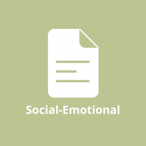 Social Emotional Report