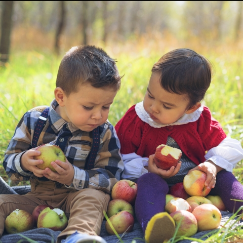 boys with apples